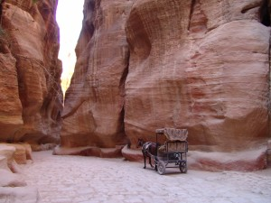 Horse carriage Petra