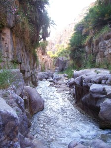 Discover Wadis