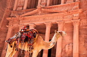 Camel in front of Treasury Petra, Jordan